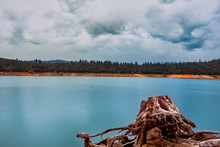 Moody Landscape Of Storm Clouds Moving Over Lake Oroville With A Tree Stump In The Foreground.