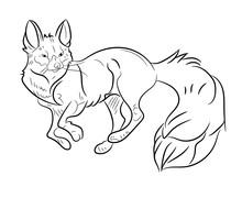 Fox, Animl