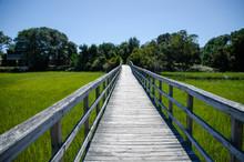 Wooden Walkway Over The Marsh ...