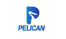 Letter P Pelican