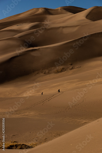 the Great Sand Dunes of souther Colorado offer wonderful views and miles of hiking