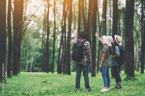 Foto auf Gartenposter Khaki A group of travelers hiking and looking into a beautiful pine woods