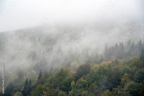 Poster Kaki fog in the mountains in autumn.
