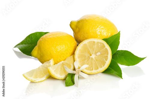 Lemons tree flower and a lemons isolated on white background - 292114355