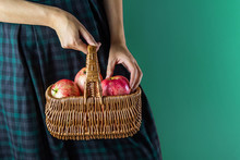 Harvest Apples In A Wicker Basket In The Hands Of A Woman On A Turquoise Background