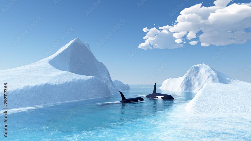 Fototapety, obrazy: whales swim in the ocean and iceberg