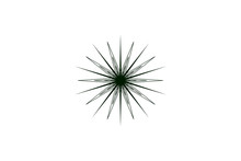 Green Acute Star Flower Virus Icon Bright Symmetrical Stained Glass Vector Isolated On White Background