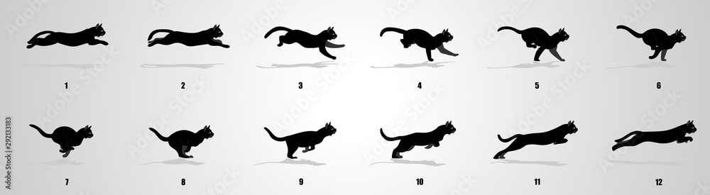 Fototapety, obrazy: Cat Run cycle animation sequence