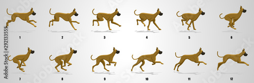 Fototapeta Great Dane Dog Run cycle animation sequence obraz