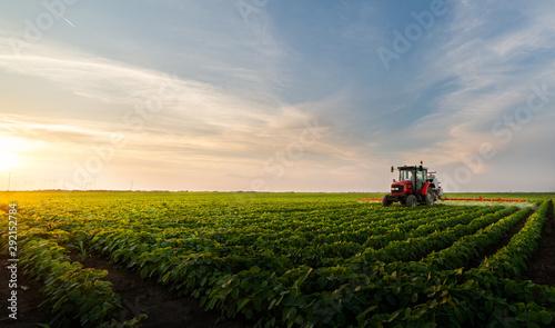 Obraz Tractor spraying soybean field - fototapety do salonu