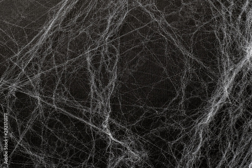 Artificial cobweb or spaider web on a black background Wallpaper Mural