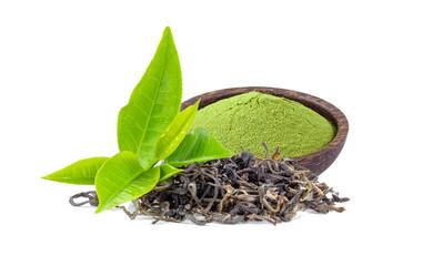 fresh green tea leaf and powdered matcha isolated on white background