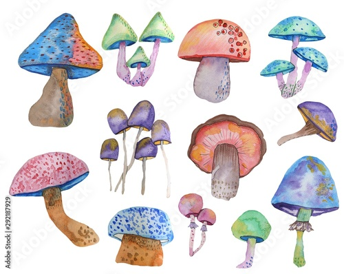 Fotografía Watercolor set of fantasy multicolored mushrooms on a white background drawn by hand by an aquel