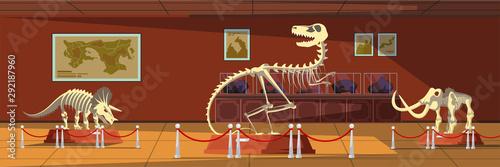 Extinct animals bones vector illustrations set Fototapet