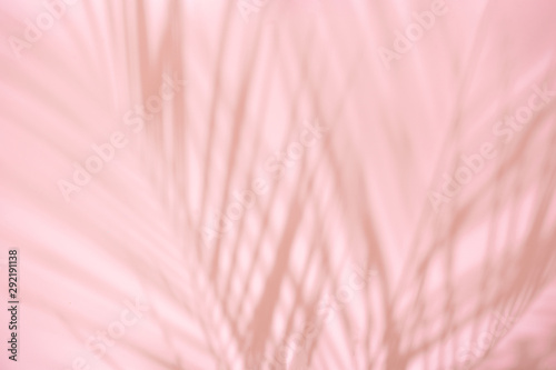 Obraz Summer beach day scene with tropical plams shadow on pink background. Minimal sunlight tropical arrangement. - fototapety do salonu