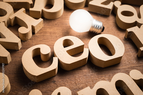 CEO (Chief Executive Officer) Wood Alphabets