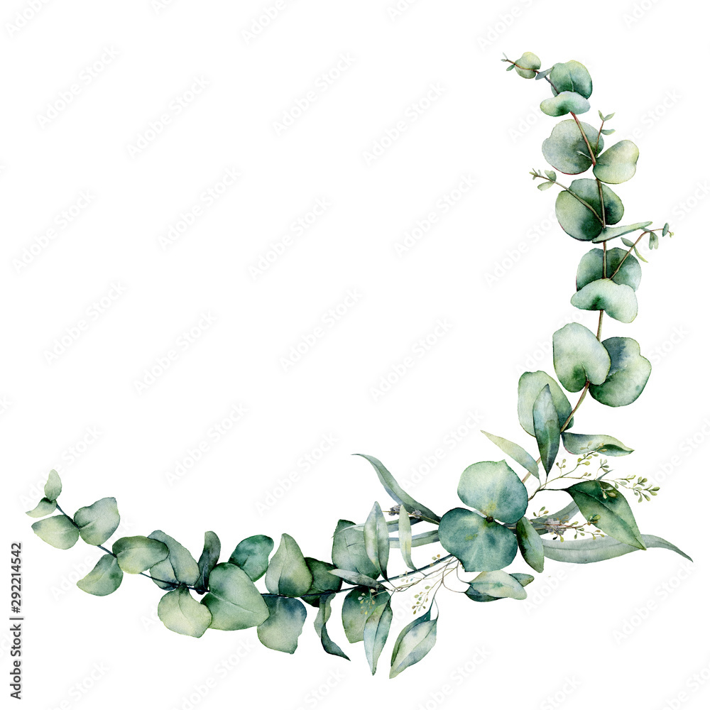 Fototapeta Watercolor eucalyptus border. Hand painted eucalyptus branch and leaves isolated on white background. Floral illustration for design, print, fabric or background.