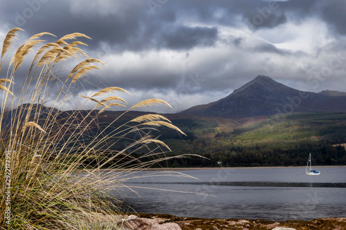 view of goats fell on arran Canvas Print