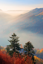 Misty Sunrise In Mountains. Wonderful Autumn Weather. Beautiful Nature Scenery Observed From The Top Of A Hill. Trees In Colorful Fall Foliage. Fog Glowing In The Distant Valley