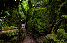 The Moss Covered Rocks Of Puzz...