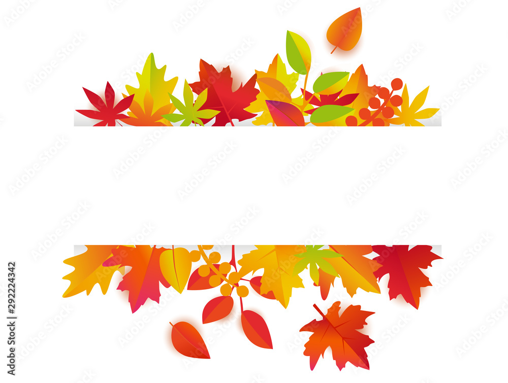 Fototapety, obrazy: Autumn leaves background vector. Fall frame with copy space for text.