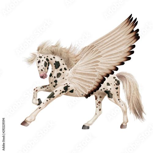 cheval,  volant, aile, noir et blanc, dalmatien, , fantastique  , animal, étalon Wallpaper Mural