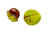 Chestnuts Isolated On White Ba...