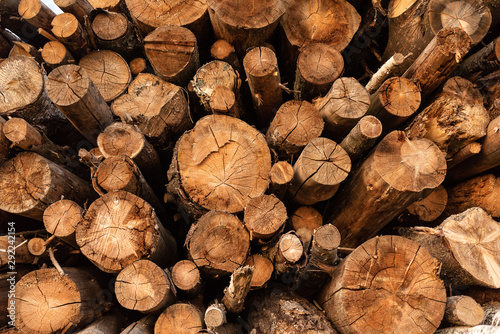 Printed kitchen splashbacks Firewood texture Timber storage area where large amount of wood is stored.
