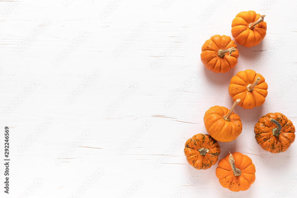 Fototapeta Small decorative pumpkins on white wooden background. Autumn, fall, thanksgiving or halloween day concept, flat lay, top view, copy space