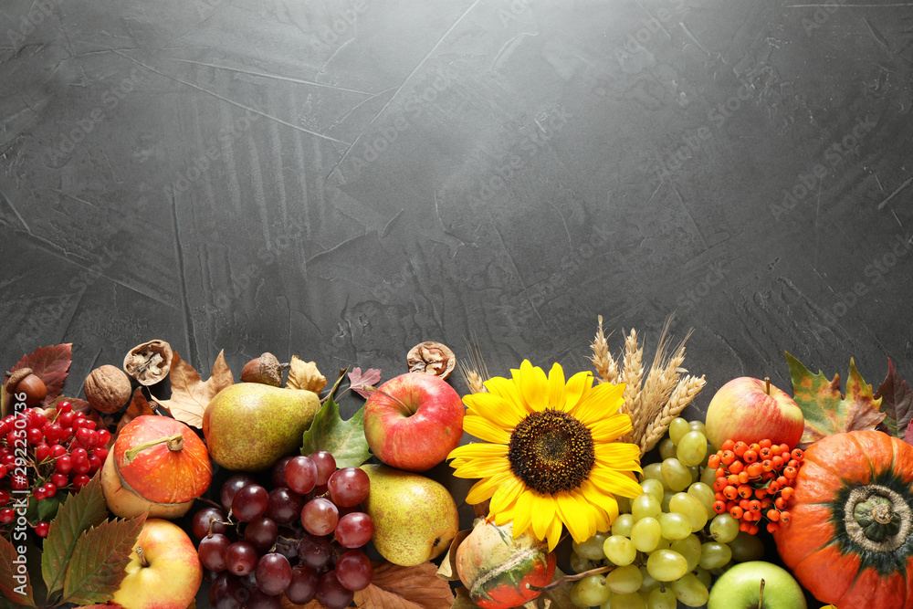 Fototapety, obrazy: Autumn fruits and vegetables on grey background, flat lay with space for text. Happy Thanksgiving day