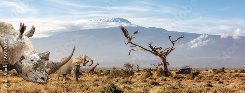 Endangered African Animals Web Banner
