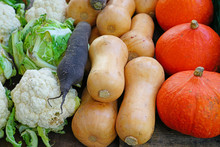 Colorful Pumpkins And Squashes At A Winter Farmers Market