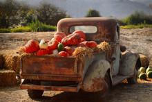 Old Rusty Truck Full Of Fall P...