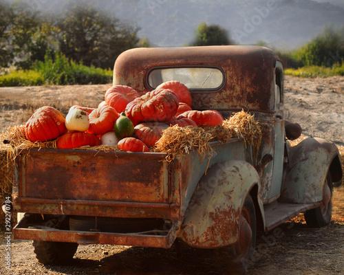 Fototapety, obrazy: Old rusty truck full of fall pumpkins