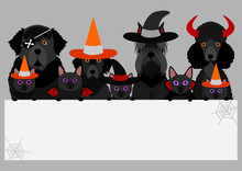 Black Halloween Dogs And Cats With White Board