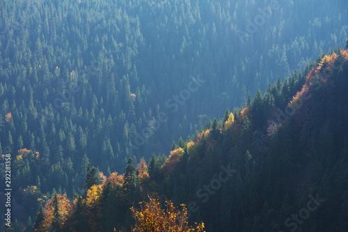 zlota-jesien-w-ukrainskich-karpatach