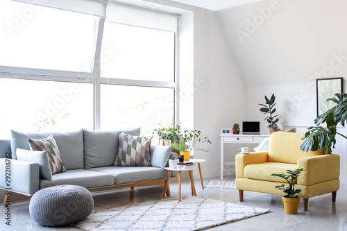 Fotografiet  Stylish interior of room with beautiful houseplants