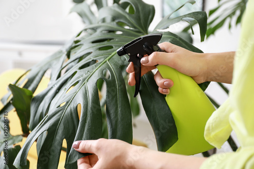 Foto auf Gartenposter Pflanzen Young woman spraying water on houseplant at home, closeup