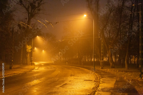 Foto auf Leinwand Budapest City park in Budapest on a winter night.