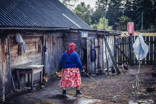 Obraz Self settler woman in Kupovate village located in Chernobyl exclusion area, Ukraine - fototapety do salonu