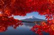Leinwanddruck Bild - Fuji mountain and Kawaguchiko lake in morning, Autumn seasons Fuji mountain at yamanachi in Japan