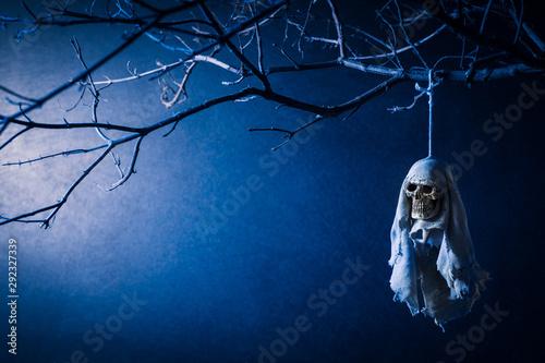 Valokuva  Human skull rainy doll dangle at the dried tree with a blue light at the back, T