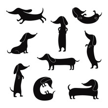 Black Silhouettes Of Dachshunds Dogs Poses Set Of Vector Illustrations Isolated.
