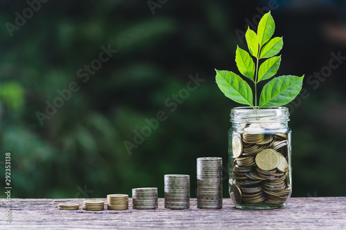 Fototapeta  Coins in glass jar with young plant on top put on the wooden plate,in soft nature  background also some coins beside