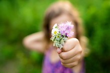 Girl Holding A Bouquet Of Wild...
