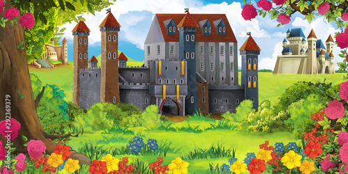 Foto auf Gartenposter Dunkelbraun Cartoon nature scene with beautiful castle - illustration for the children