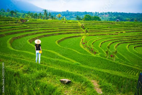 Fotobehang Rijstvelden Rice terraces in mountains, Bali Indonesia