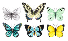 Set Of Watercolor Illustrations Depicting Bright White, Yellow, Green And Blue Butterflies Isolated On A White Background, Hand-painted