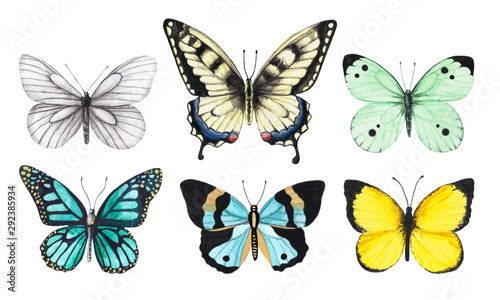 Fotografía  Set of watercolor illustrations depicting bright white, yellow, green and blue b