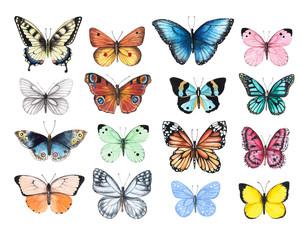 Skup ilustracija akvarela koji prikazuju svijetle leptire izolirane na bijeloj podlozi, ručno oslikane